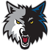 Minnesota_timberwolves_medium