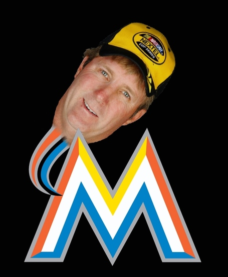Marlin_marlins_medium