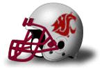 Wsu_helmet_medium