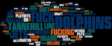 Top_100_-_rmiamidolphins_most_used_words_for_the_2013_season_-_imgur_medium