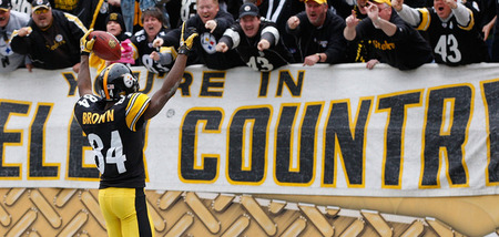 PITTSBURGH, PA - DECEMBER 04:  Antonio Brown #84 of the Pittsburgh Steelers celebrates with the fans after returning a 60 yard punt for a touchdown against the Cincinnati Bengals in the first half during the game on December 4, 2011 at Heinz Field in Pittsburgh, Pennsylvania.  (Photo by Jared Wickerham/Getty Images)