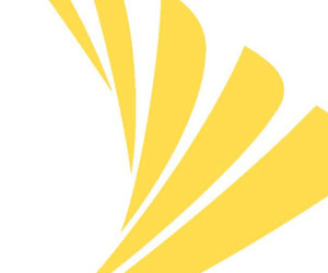 Sprint Logo large