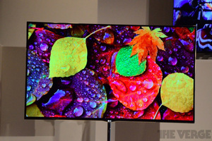 Gallery Photo: LG 55-inch OLED TV hands-on pictures
