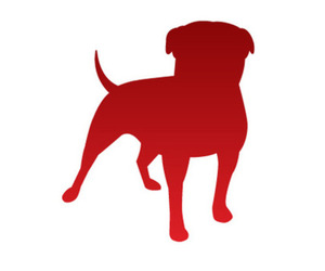 Zynga Dog