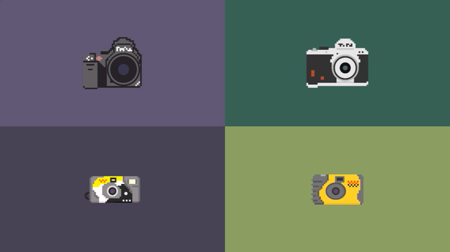 camera collection (bill brown)