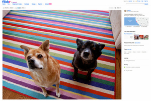 Flickr bigger images
