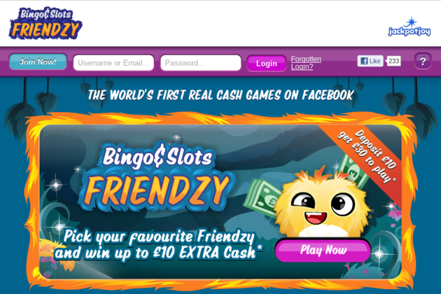 Bingo Friendzy screen