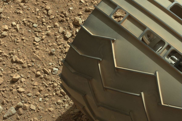 rover lead
