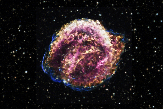 kepler supernova