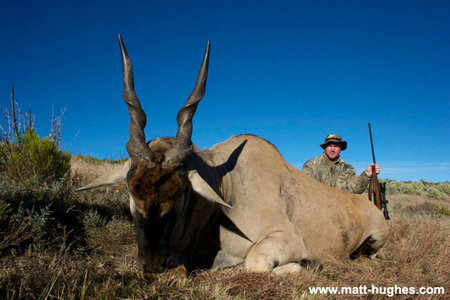 Matt Hughes bags and tags an eland on his trip to Africa. See all the photos at his official website right here.