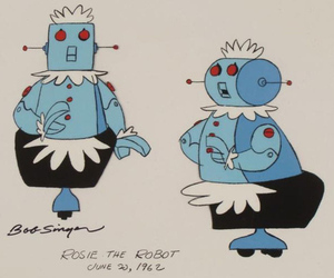 iCOLLECTOR rosie the robot
