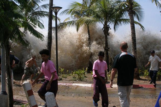 tsunami (wikimedia)