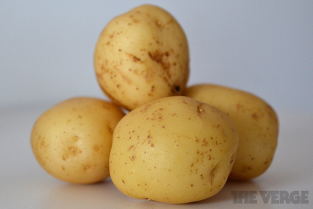 Potatoes1_640_large
