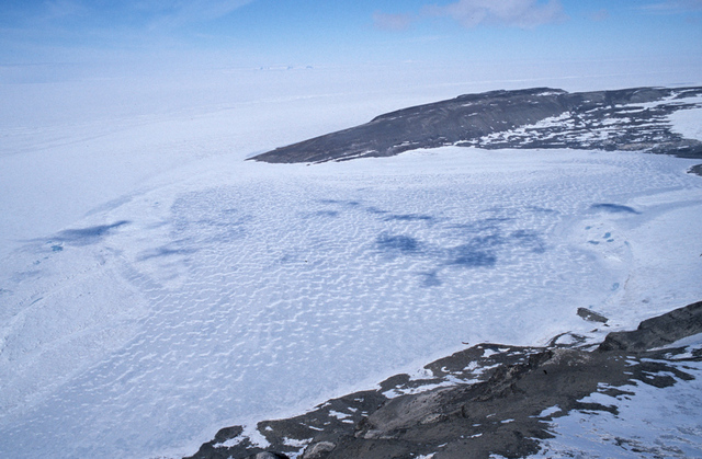 Scientists discover 100,000-year-old organisms in frozen Antarctic lake