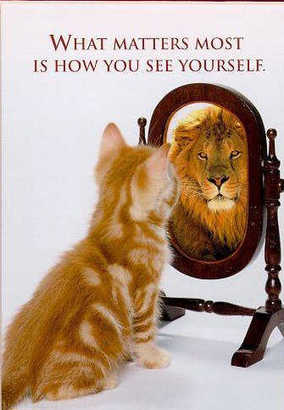 Funny-cat-picture-cute-kitty-pic-kitten-looking-in-mirror-seeing-a-lion
