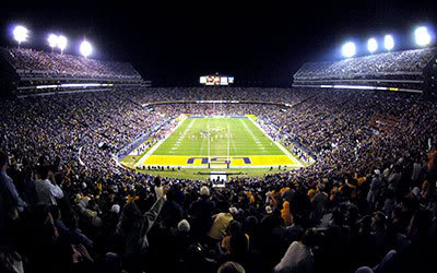 Lsu_tiger_stadium_restyling_medium