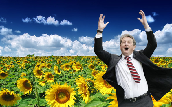 sunflower roy