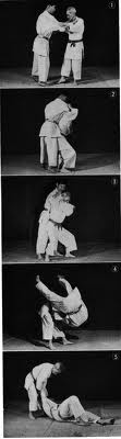 Ippon_seoi_nague_medium_medium