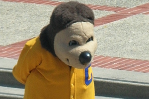Oski_at_cal_day_2010_3_jpg_large_medium_medium