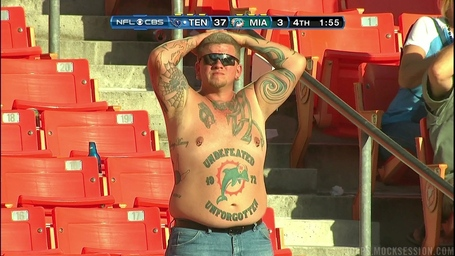 Dolphins Fan