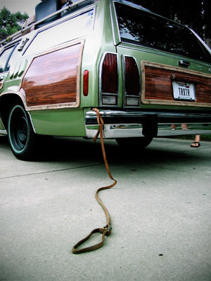 Truckster_dog_leash_medium