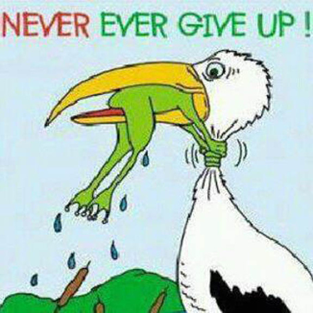 Never-give-up_medium