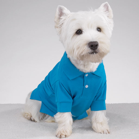 Preppy-puppy-dog-polo-cape-blue-1_medium