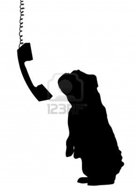 3739601-dog-sitting-up-begging-with-phone-receiver-dangling-down-beside_medium