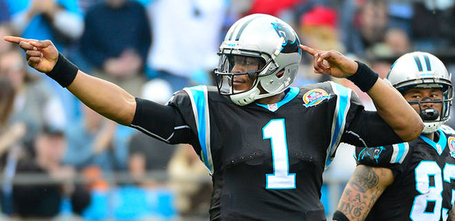 120912-nfl-newton-pi-am_20121209163400163_660_320_jpg_medium
