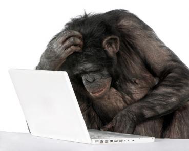 Hw_monkey-computer_medium