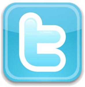 Twitter_icon4-294x300_medium