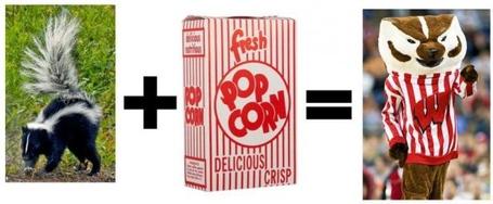 Skunk_popcorn_bucky_medium
