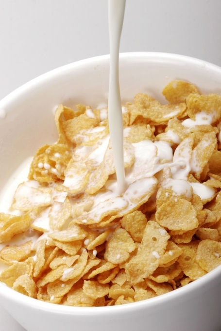 Cereal-bowl-with-milkcrunchy-or-soft--what-kind-of-cereal-do-you-want-to-be-----rock-ivswujox_medium