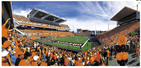 Oregon_state_football_pictu_medium