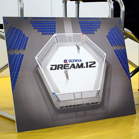 Dream12cage_medium