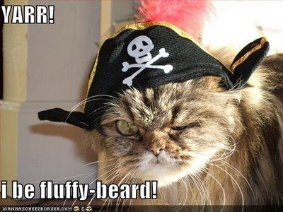 Pirate-cat3_medium