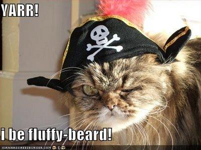 Pirate-cat3_medium