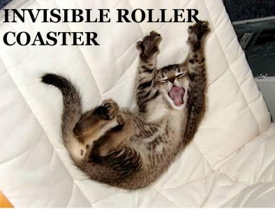 Invisiblerollercoastercat_medium