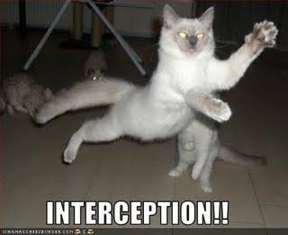 Funny-pictures-cat-intercepts_medium