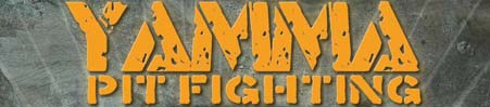 yamma pit fighting results