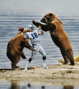bears-attacking-peyton-manning