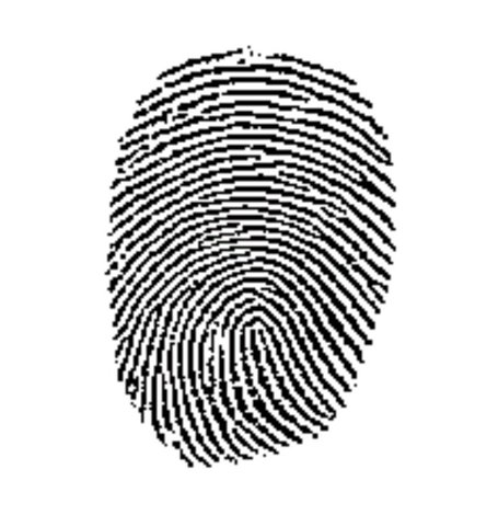 Fingerprint_medium
