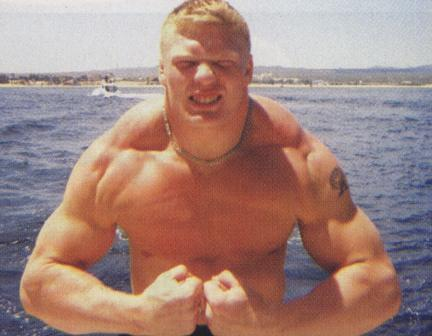 Brock-lesnar-12_medium