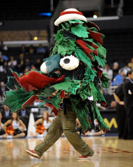 Stanford_tree_2_medium