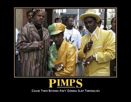 Pimp1_medium