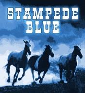Stampede-blue_medium