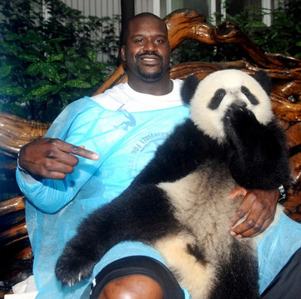 Shaq-and-a-panda_medium