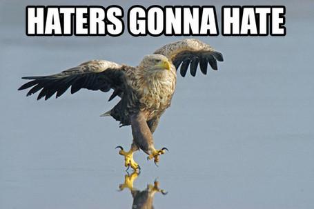 Haters_medium
