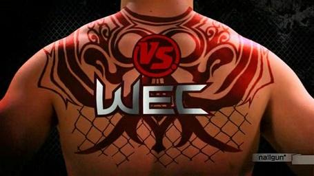 Wec_logo_medium