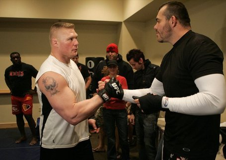 Brock_lesnar_tim_sylvia_medium
